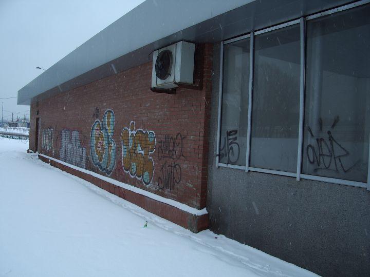 аннино южный вестибюль-2.jpg