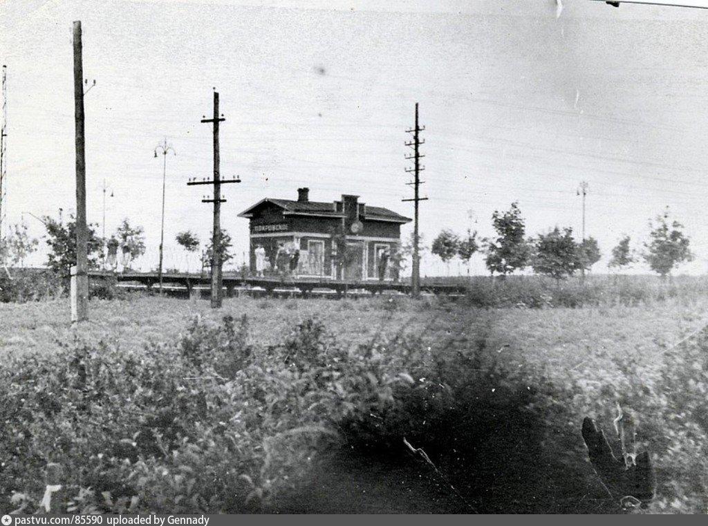 Покровское 1948.jpg