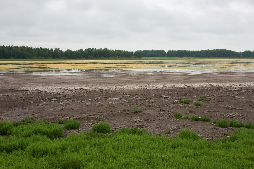 Ходулочниковое озеро