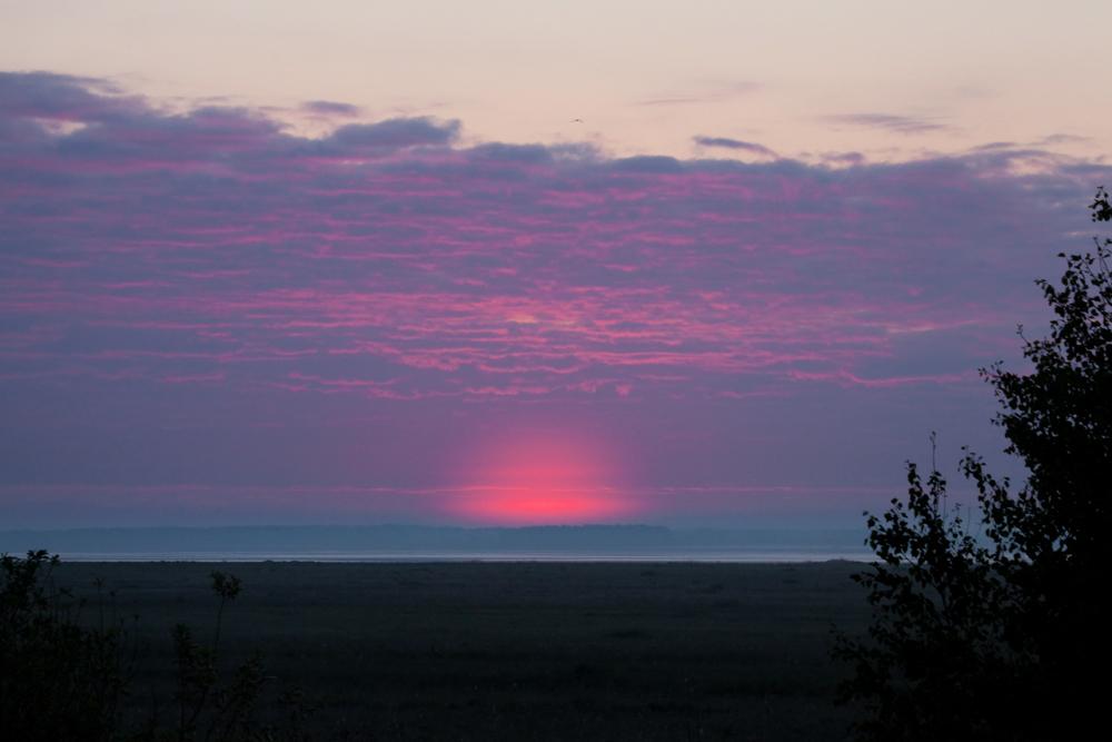 Восход в степи