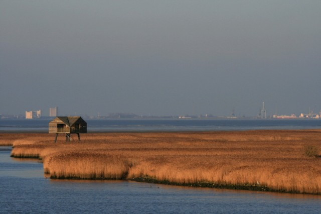 A bird-watching hide just over the border in Germany, Emden is in the background