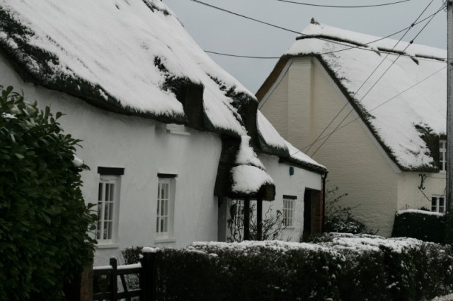 Cottages in the village