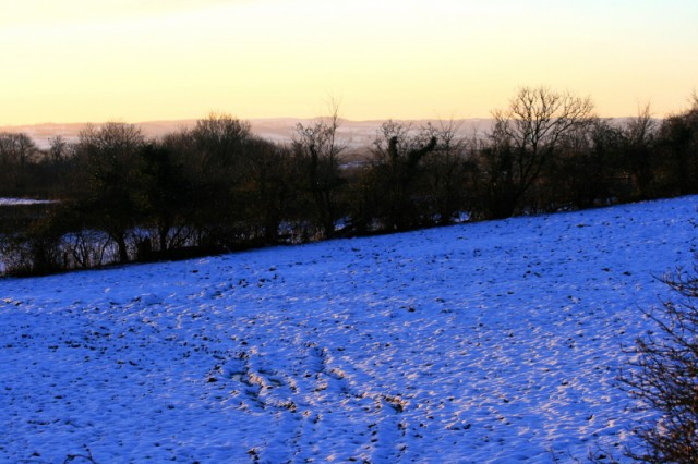 I love the way that the snow looks blue in the shadows