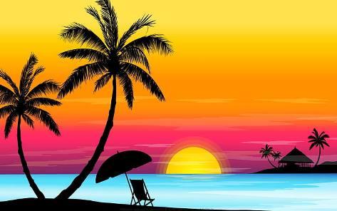 пальма.jpg