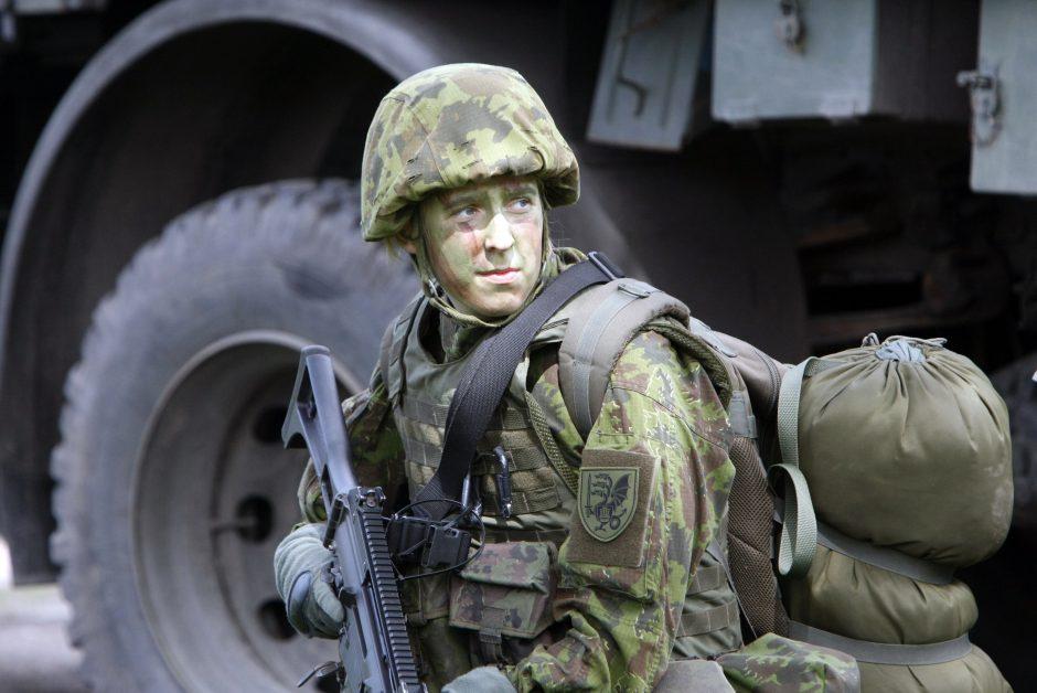 В литовской армии сформирована вторая бригада