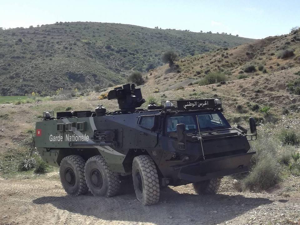 Тунис получил бронетранспортеры VAB Mk 3