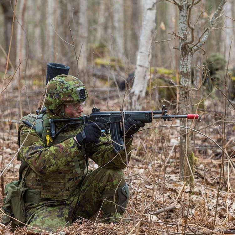 Estonia announces tender for new automatic rifles
