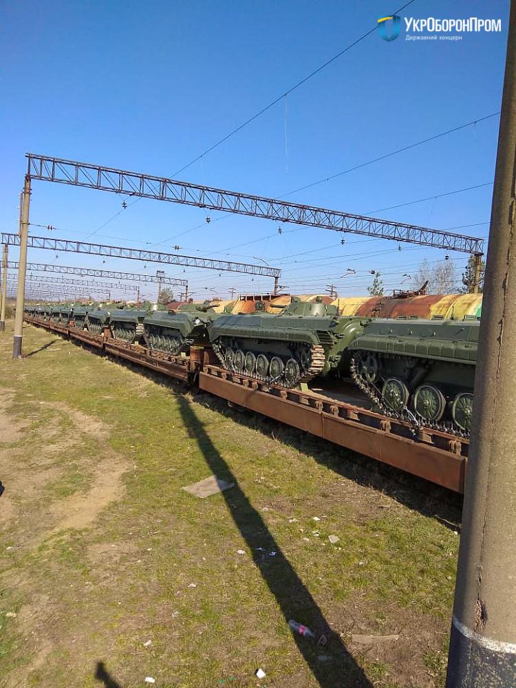 BMP01