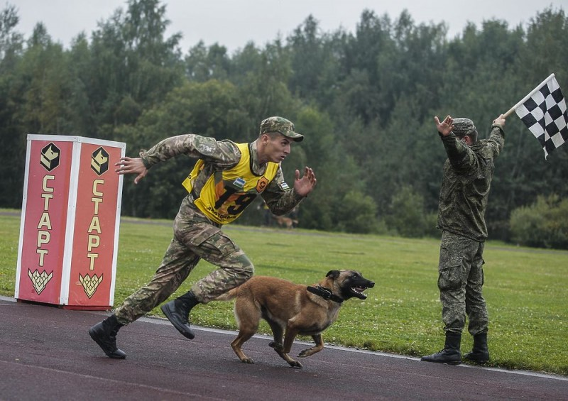 В Подмосковье прошли соревнования военных кинологов 4165936_8836147