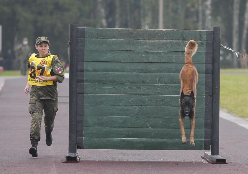 В Подмосковье прошли соревнования военных кинологов 3833931_2353408