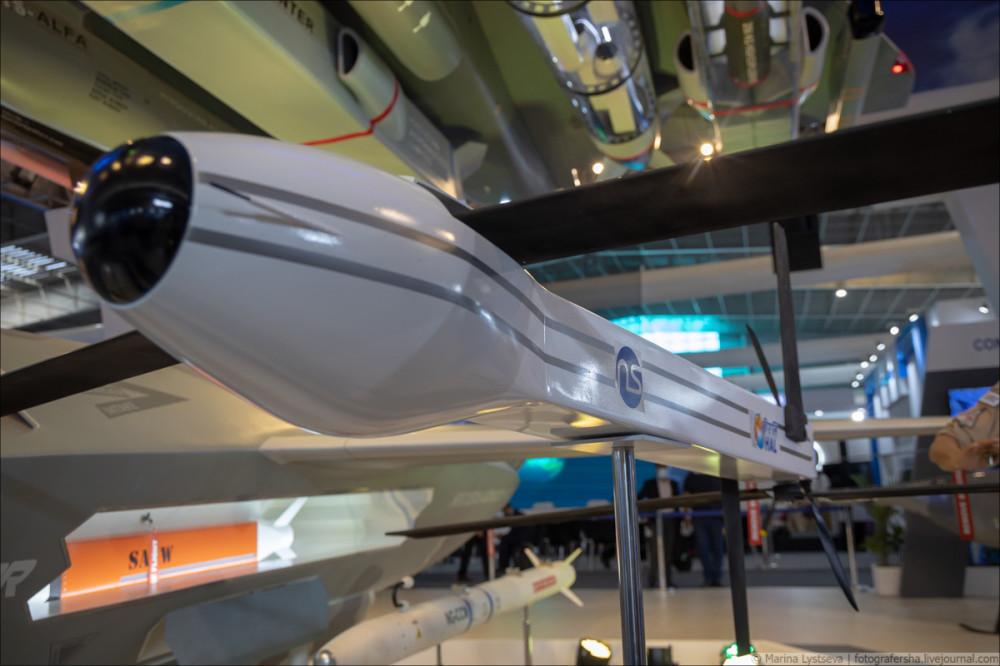 Перспективный индийский беспилотный летательный аппарат Warrior 6Y9A4001