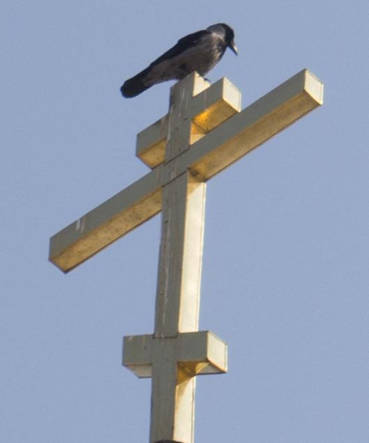 птица на кресте