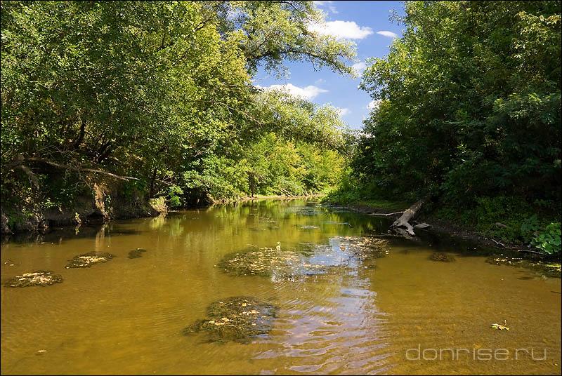 Устье река Берёзовой