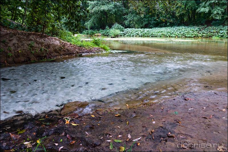 Впадение вод родника в Песковатку