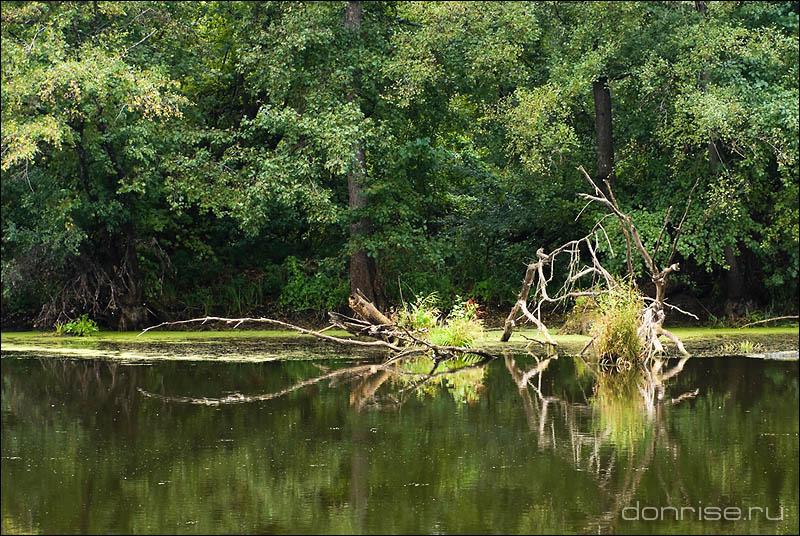 Заветное местечко на озере