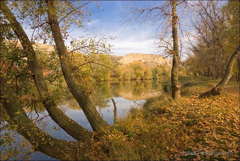 Осень на Калитве