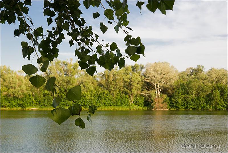 Вёшенские озёра