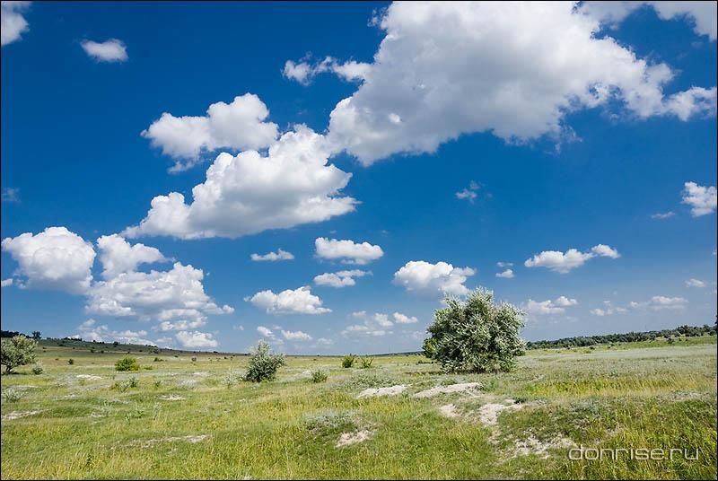 Пейзаж с байбачьими отвалами