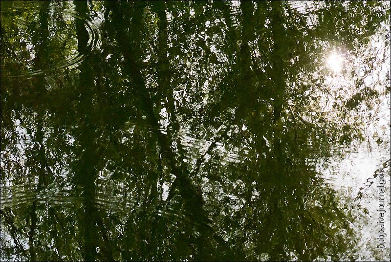 Вода Калитвы