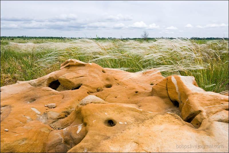 Камни в степи