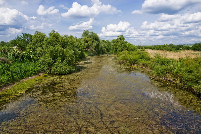 Река Большой Калитвенец у Мартыновки