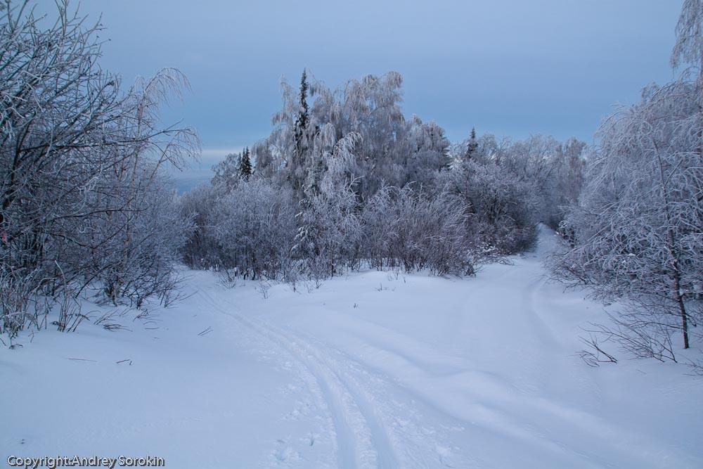 Зимний Златоуст