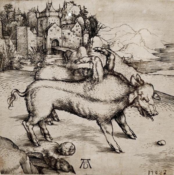 Альбрехт Дюрер. Свинья-чудовище из Ландсера. 1496.