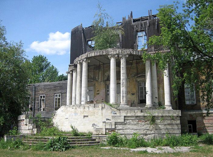 Сгоревший дворец Разумовского. Парковый фасад. Фото 2001.