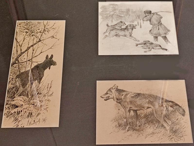 Комаров А.Н. Иллюстрации для журнала «Псовая и ружейная охота». 1900-1907-е. Картон, перо, тушь.