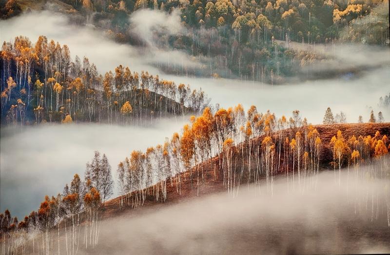 Симфония тумана. Красимир Матаров, Болгария. Место съемки: Румыния.