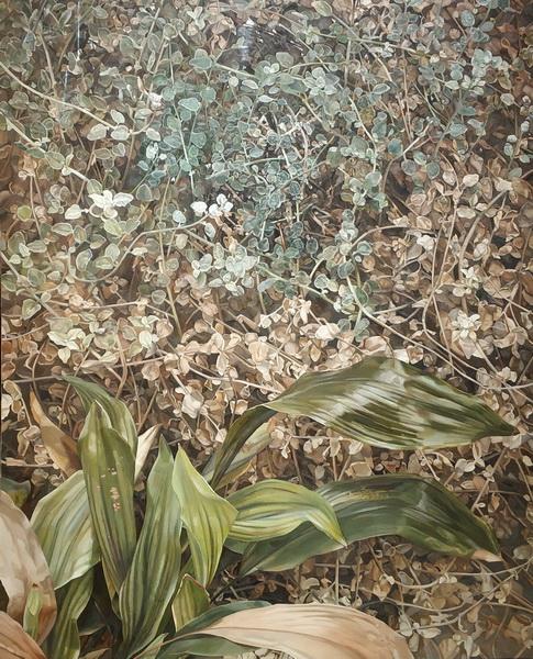 Люсьен Фрейд. Два растения. 1977-1980. Холст, масло. Галерея Тейт.