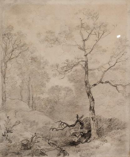 Томас Гейнсборо. Лесной пейзаж. 1750-е. Бумага, графитовый карандаш. Дом-музей Гейнсборо, Саффолк. Передано на хранение из частной коллекции.