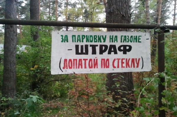 газон_парковка_1