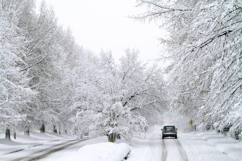 Калифорния - Зима