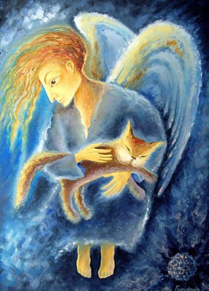 ангел и котик