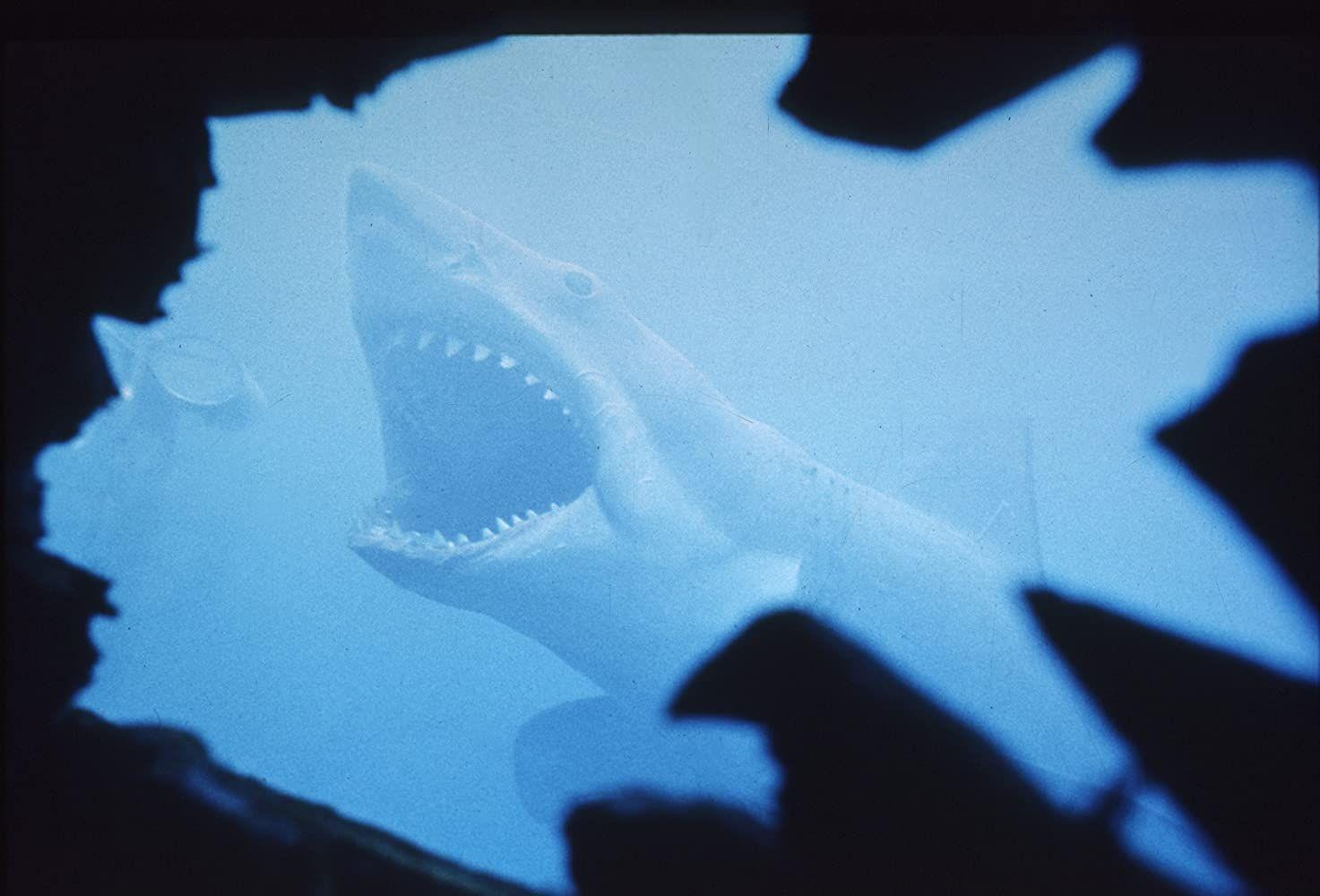 Фильм «Челюсти» режиссера Стивена Спилберга. Фото: imdb.com