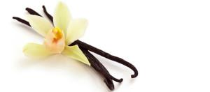vanillabeans680_t640