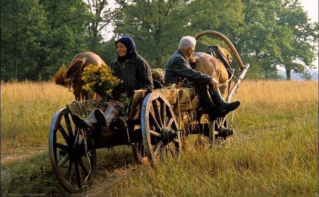 Вести из Кремля: Путин сократил рабочую неделю женщинам, работающим в сельской