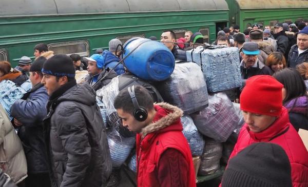 Россия ждет мигрантов! Их собираются завозить чартерными поездами
