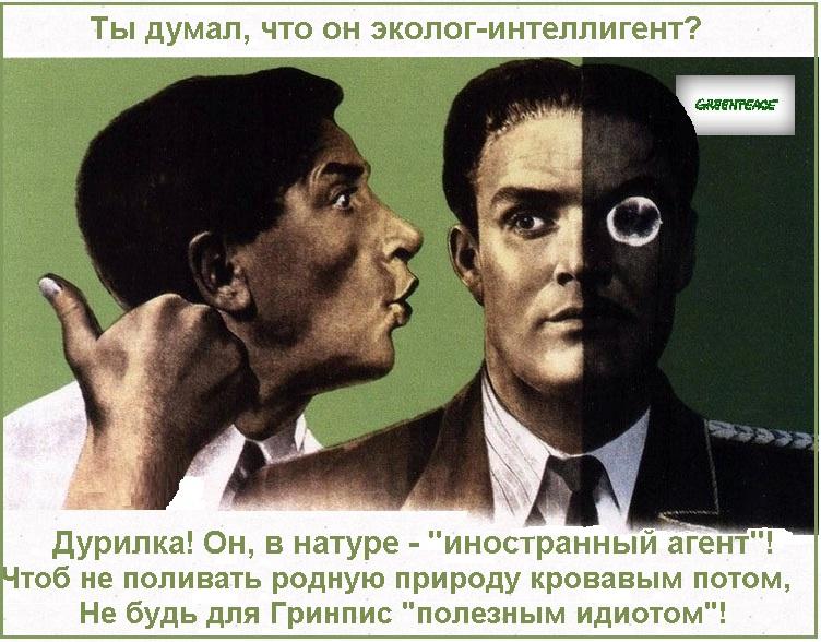 фото картинка постер