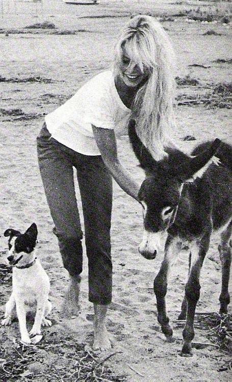 Brigitte Bardot11
