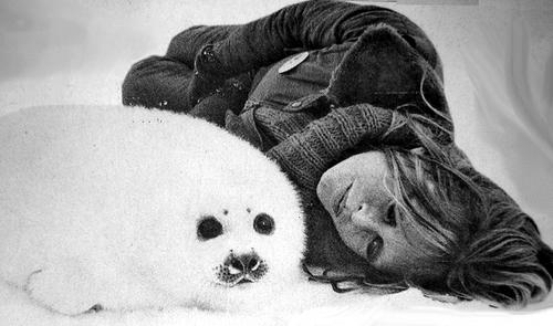 Brigitte Bardot111