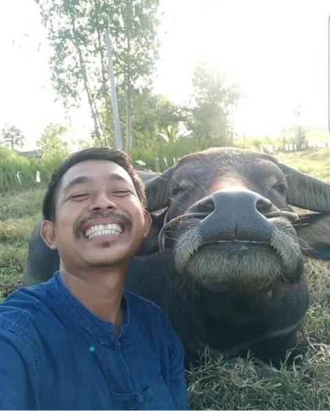13 типов тайских улыбок. Что они означают?