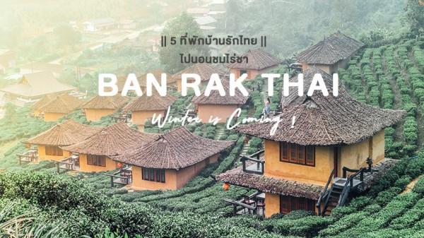 Бан Рак Тхай- от опиума к чаю