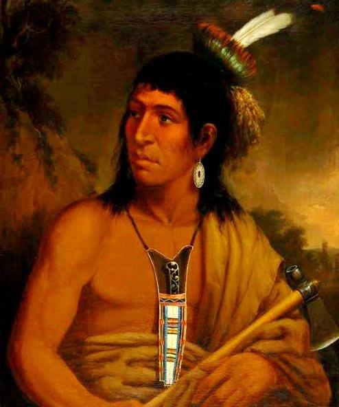 Индейская мудрость. Ироничные меномини
