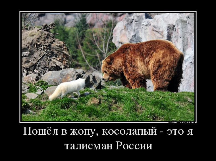 457534_poshyol-v-zhopu-kosolapyij-eto-ya-talisman-rossii_demotivators_to