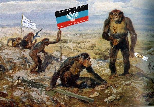 """СЦКК - ОБСЕ: """"Населенные пункты вблизи линии фронта находятся на грани гуманитарной катастрофы"""" - Цензор.НЕТ 8640"""