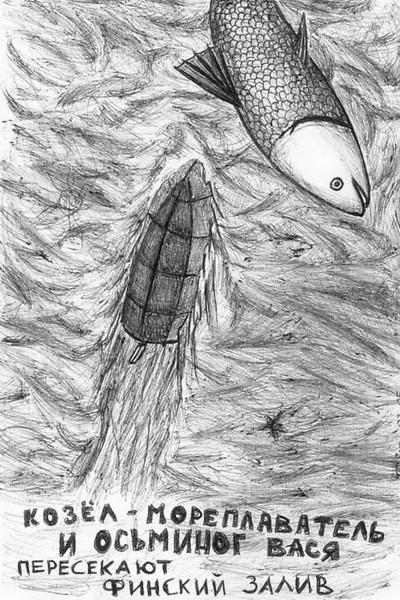 kozel i osminog plivut - vid snizu