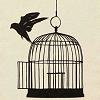 1 - bird