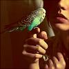3 - bird